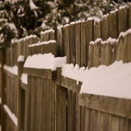 Płoty i zasłony ogrodowe – jak wybrać?