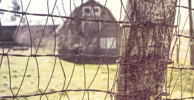 Jakie ogrodzenie do posesji?